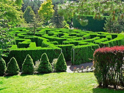 Пример оформления сада